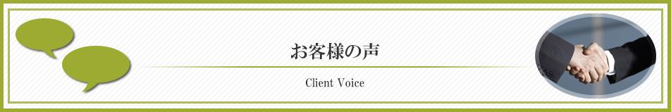 mainb-voice